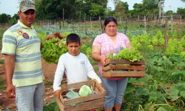 Agricultura familiar indispensable en tiempos de pandemia