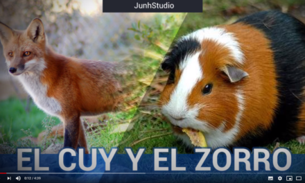 EL ZORRO Y EL CUY – CUENTO