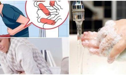 Enfermedades del Aparato Digestivo (Parte I)