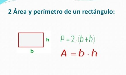 Área y perímetro de rectángulos