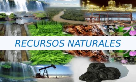 Cuidemos todo lo que nos brinda la Naturaleza (II parte)