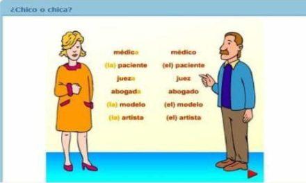 El género de los sustantivos