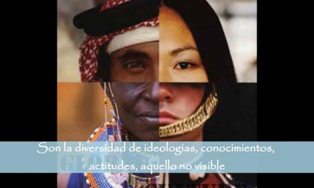 Video Interculturalidad