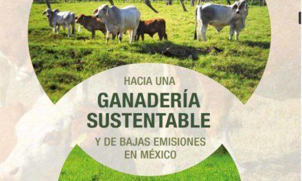 Hacia una ganadería sustentable y de bajas emisiones en México