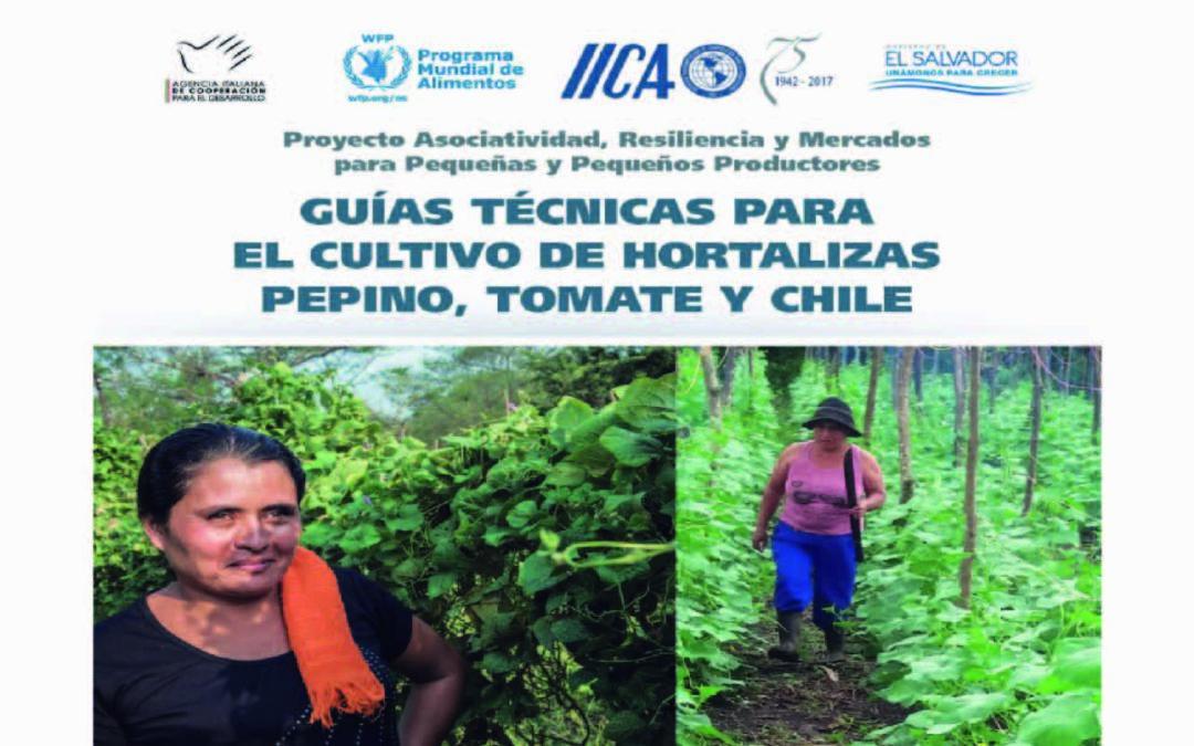 Guías técnicas para el cultivo de hortalizas pepino, tomate y chile dulce