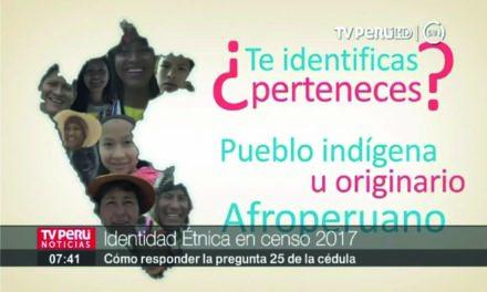 Censo 2017 autoidentificación étnica